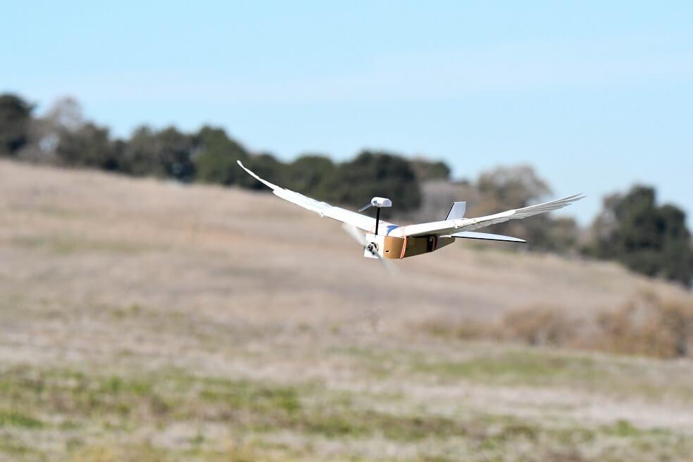 El robot que logró doblar las alas como un pájaro y podría revolucionar la aviación