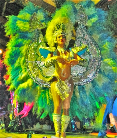 The annual carnival parade is usually held in February, but you can experience samba shows in restaurants if you want to soak up the carnival atmosphere.