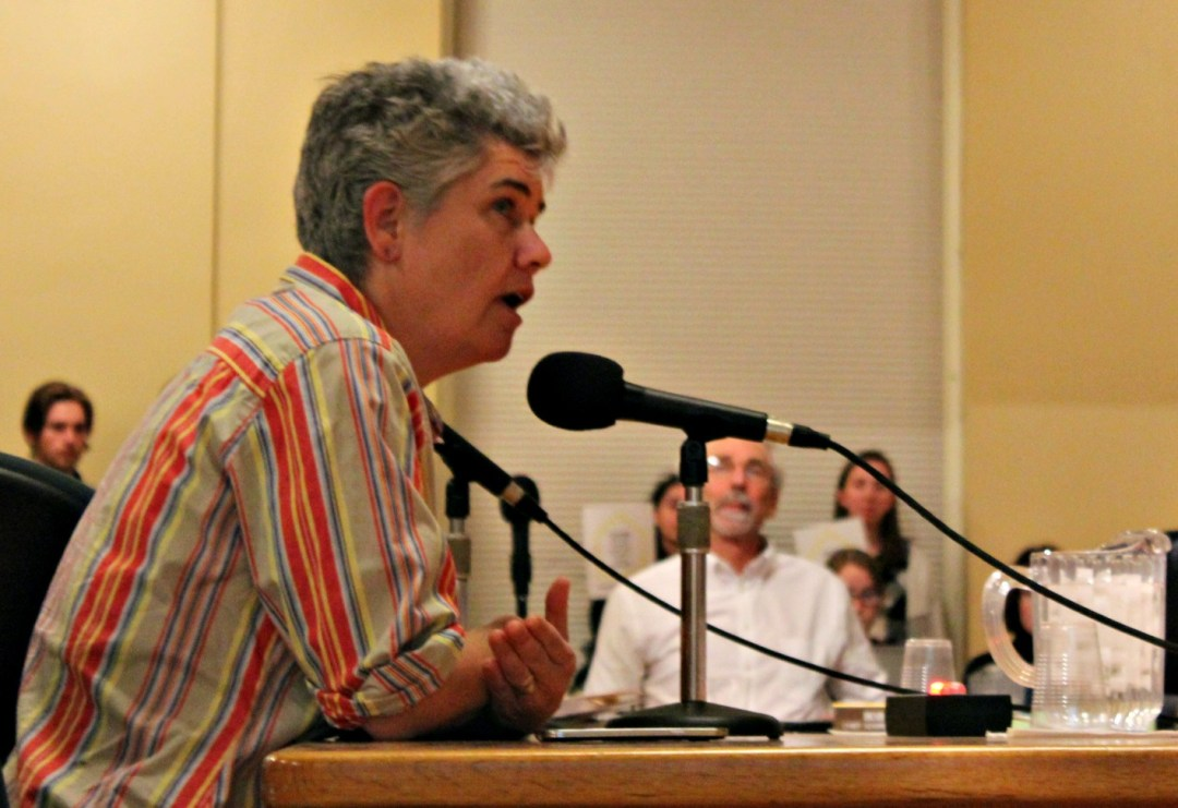 Kit O'Connor, the legislative coordinator for Vermont Amnesty International, an organization that fights for human rights, addresses the Burlington (Vt.) City Council during the public comment period of a meeting on Monday, Nov. 28.