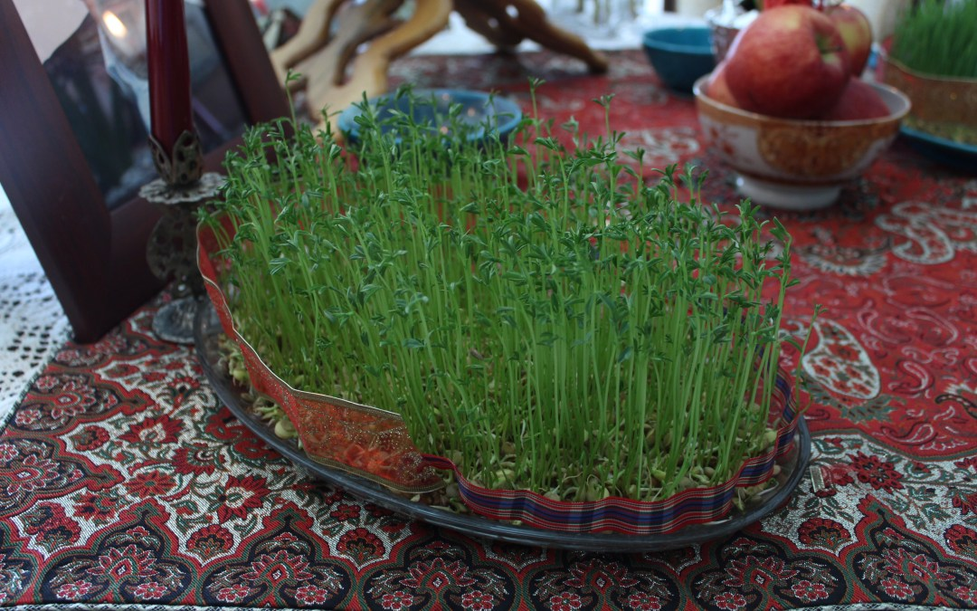 Reflecting upon Nowruz on the 'Day of Nature,' Sizdah Be-Dar
