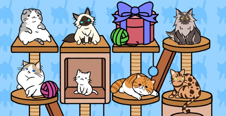 'Cat Condo' is a waste of time if played incessantly