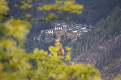 Bhutan, the world's only carbon negative country