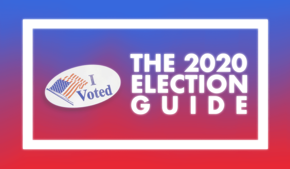A beginner's guide to the election