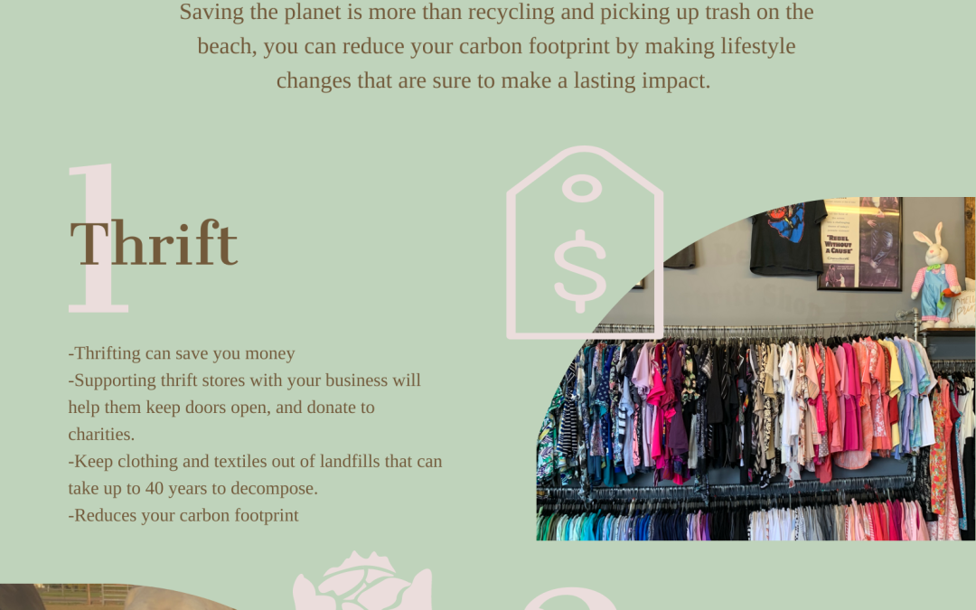 Opinion: Shop secondhand, save the animals and the planet