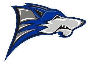 chandler wolves football