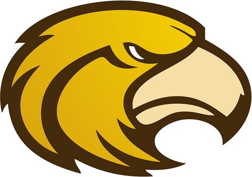 Laguna Hills Hawks football