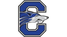 chandler high school football
