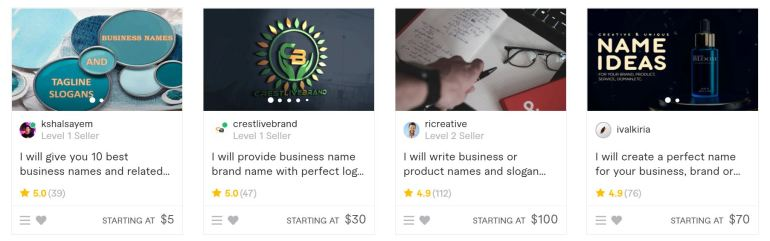 find a business name and make money from fiverr