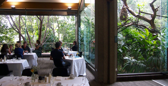 High Tea at Melbourne Zoo