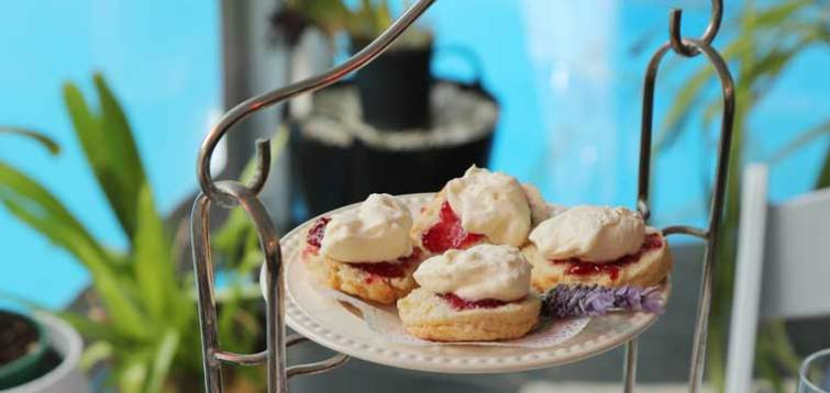 High Tea at Greenmantle Estate Lodge
