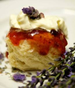 Scones with jam and cream - supplied photo