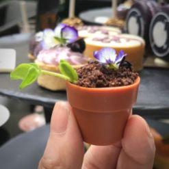 Yuzu Viola Flowerpot