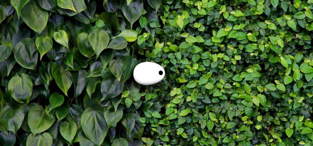 Jardinagem perfeita. Koubachi Wi-Fi Plant Sensor