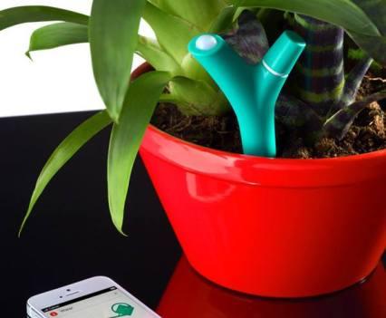 Flower Power, da Parrot, para as plantas