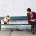 A voz do seu cão