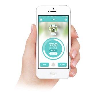 Cães e Gadgets. SmartFeeder