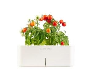 Gadgets para plantas e jardim. Ambiente high-tech para plantas Click & Grow