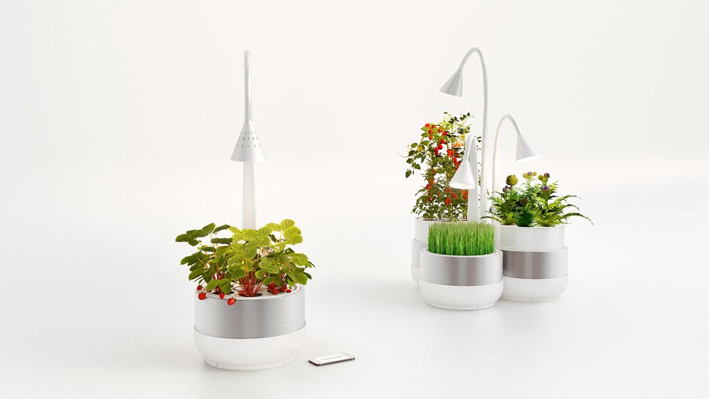 SproutsIO, para cultivar uma horta dentro de casa