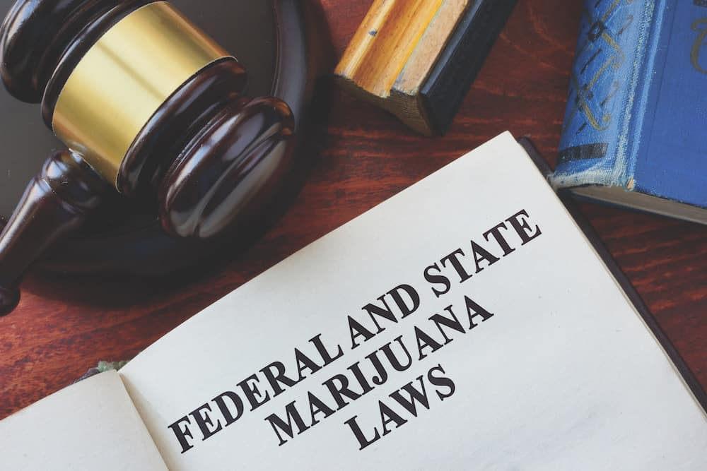 How to Hire a Pot Lawyer