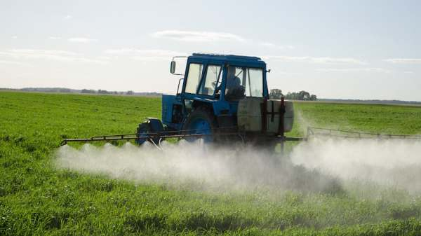 Use of Toxic Pesticides Increased in California's Illegal Weed Farms