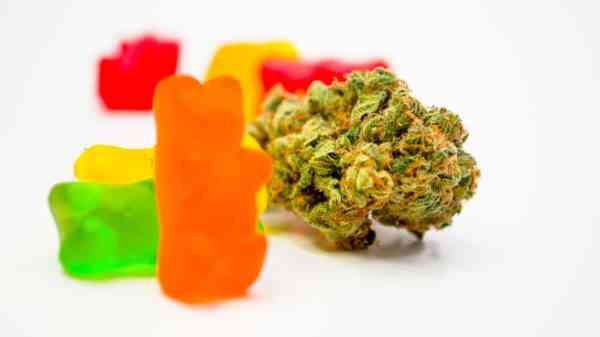 Florida Middle Schooler Faces Felony Charges After Giving Classmates THC Gummies