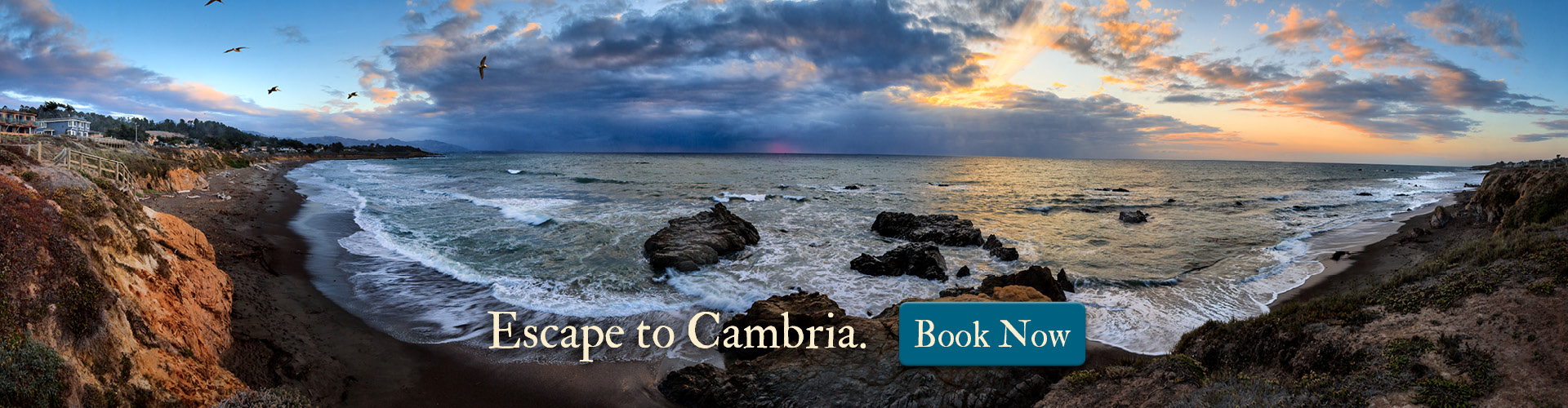 Cambria Book Now