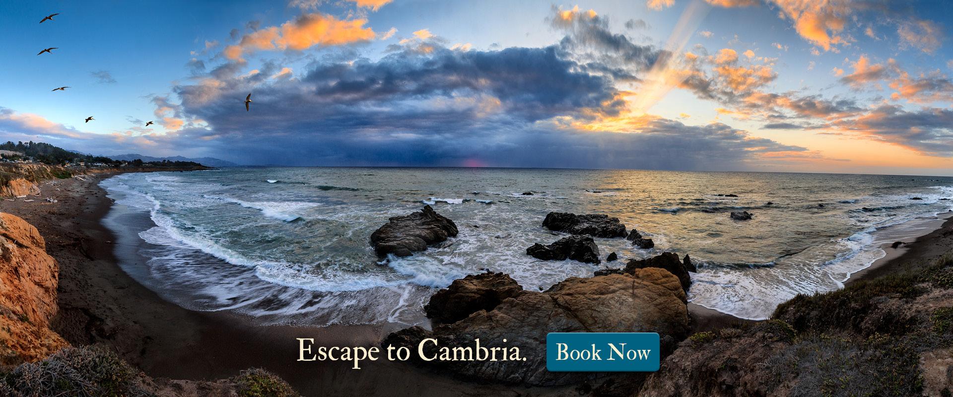 Escape to Cambria