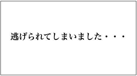 熊本 ポケモンgo レアポケモン