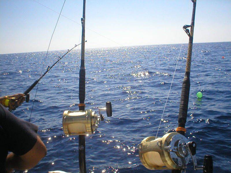 La Pesca Tipo Trolling