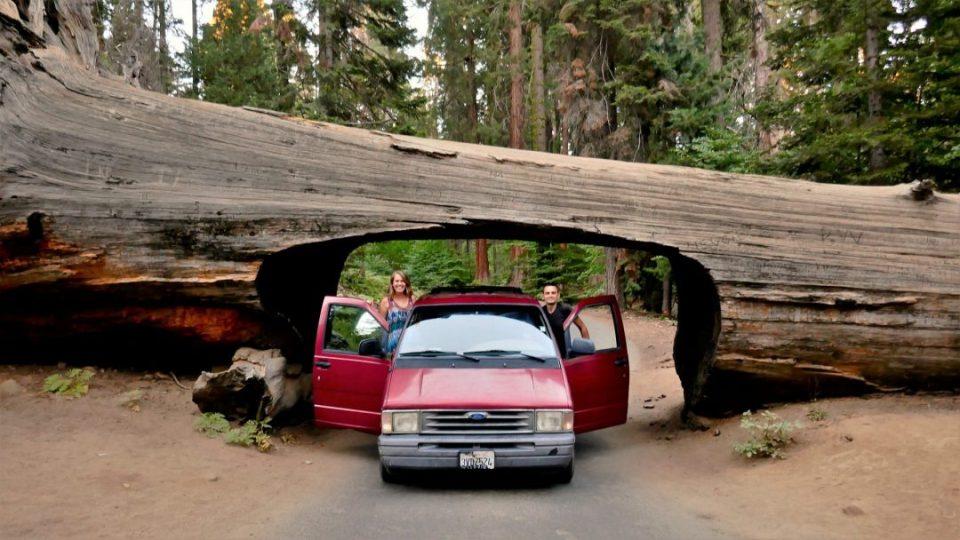 dookoła świata: kamper w Sequoia NP