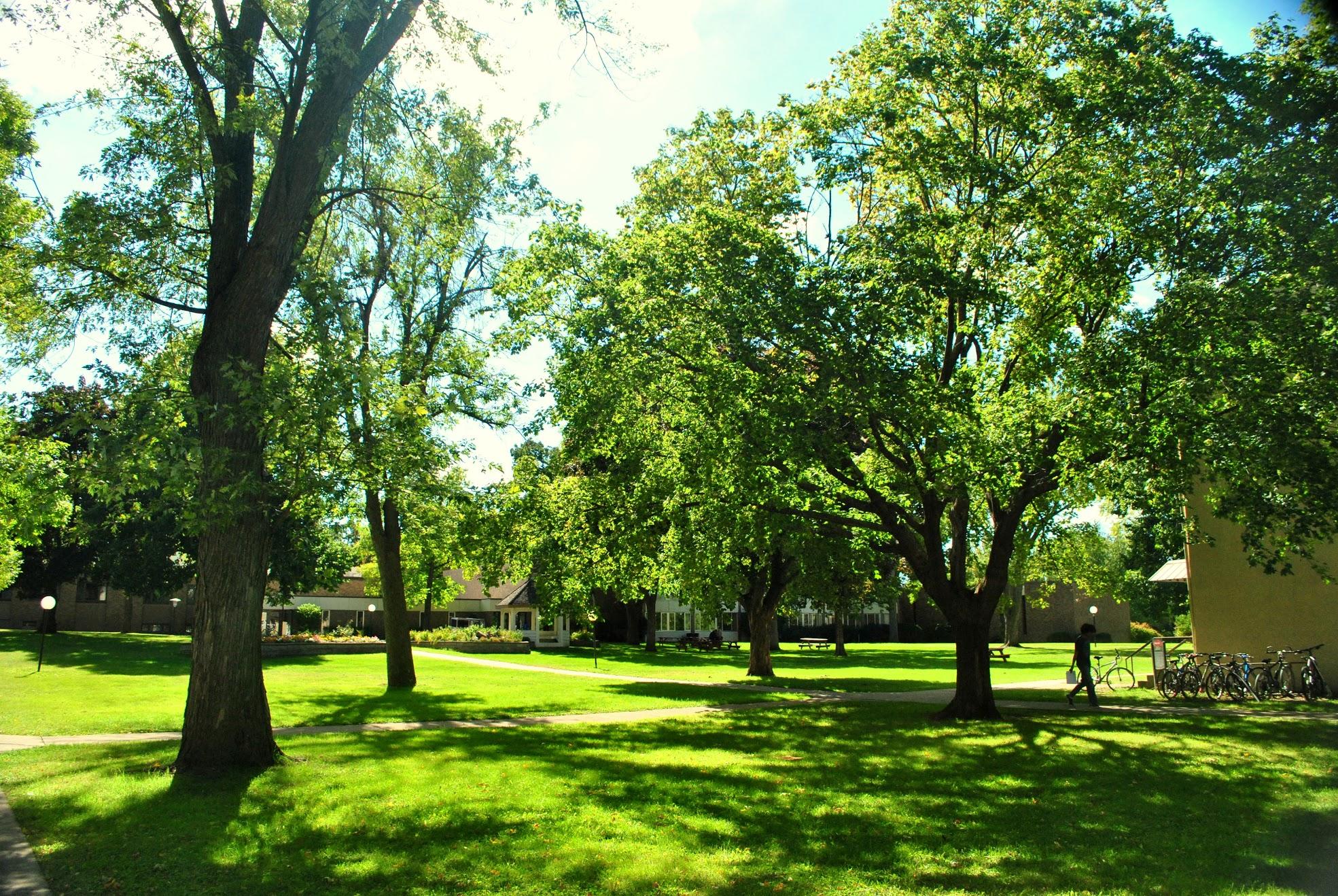 BGU-Campus-Summer20148