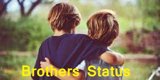 Brothers Status In Hindi Attitude And Best Status & Shayari For Fb On Brother