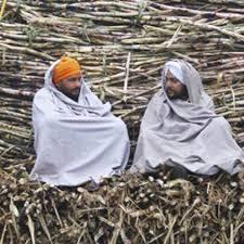 राजस्थान चीनी उद्योग   Rajasthan Sugar Industry