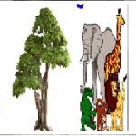 पादपों व जंतुओं में अंतर | Difference Between Plants And Animals In Hindi