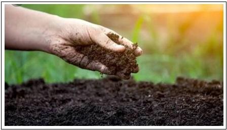 Poem On Soil In Hindi
