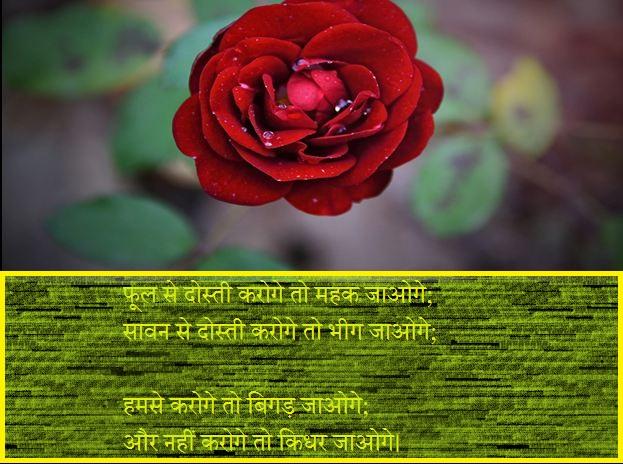 Sawan Shayari Hindi