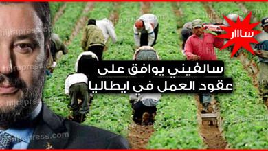Photo of عقود عمل موسمية في ايطاليا 2019 – سالفيني يوافق على decreto flussiلجلب العمال الأجانب