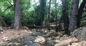 Amud stream, Upper Galilee, Israel