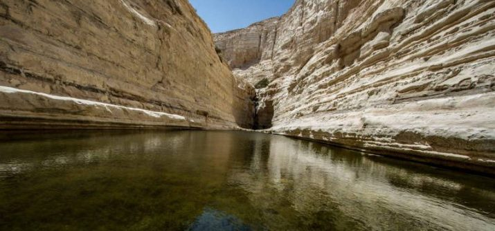 Pool in ZIn Canyon, Negev desert, Israel