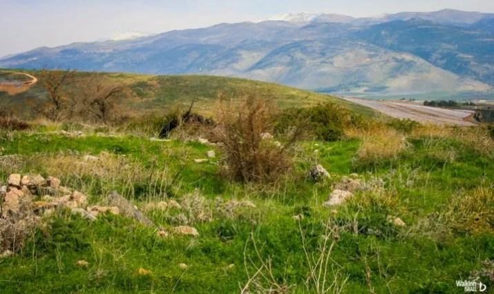 Galilee Panhandle