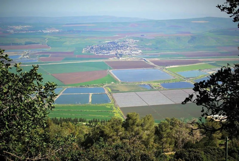 Jeezrael Valley from Mount Gilboa