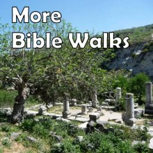 Bible walks in the Holy land