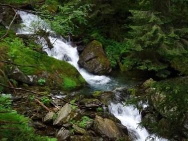 נחל בלב היער בהרי הקרפטים