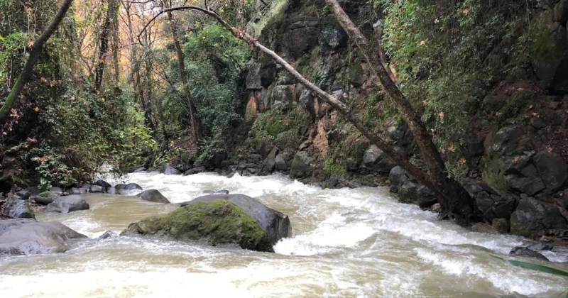 Banias (Hermon) Stream Nature reserve in northern Israel