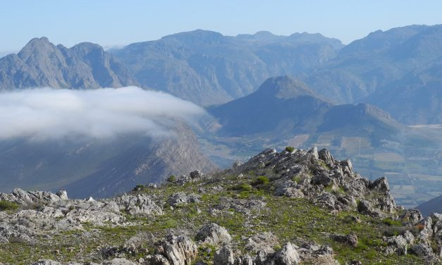 Perdekop – Mt Rochelle Reserve