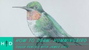 how_to_draw-hummingbird-thumbnail