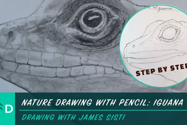 nature drawing with pencil iguana