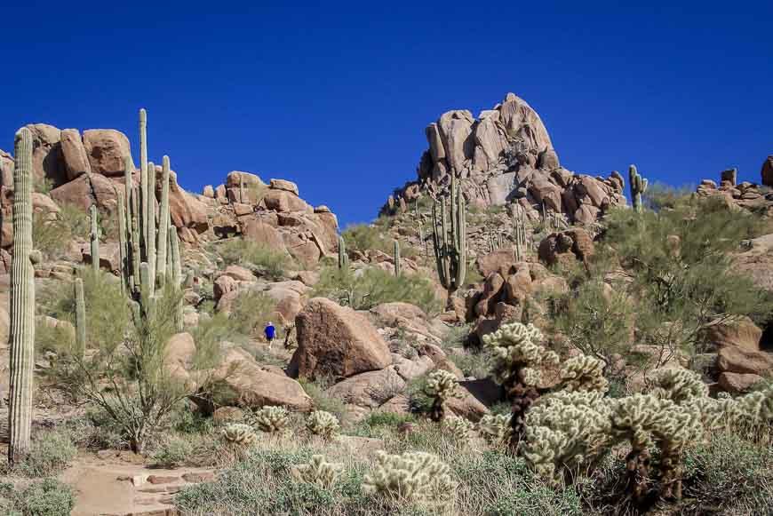 Access pinnacle peak is one mile southeast of downtown enumclaw. Hiking Pinnacle Peak In Scottsdale Arizona Hike Bike Travel