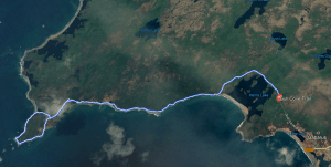 Gull Cove Trail Track
