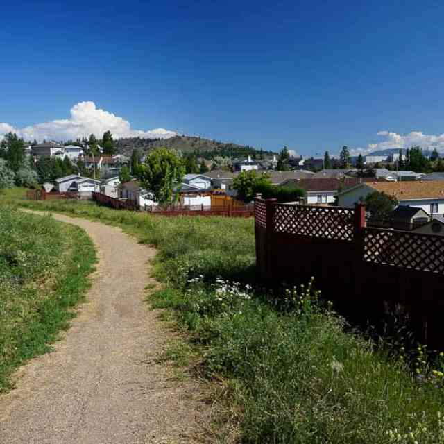 Pineview Valley Trail